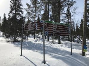 Det verkar som det finns turleder på skidor mellan Ylläs och Muonio