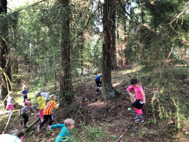 Orienteringsträning med Hestra (eller skogslek som det heter för de minsta). Här letar barnen efter memorykort i par