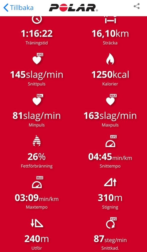 Mellanmjölkträning inför SM 100 km i Helsingborg under SM-veckan i juli 2018