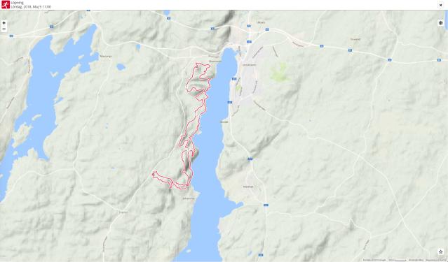 """Karta Västgötaloppet Trail 28 km 2018. Jag önskar Polar hade använt en annan kart. Här ser man inte mycket. Vi sprang i alla """"inlandsvägen"""" norrut innan vi vände och sprang """"sjövägen"""" tillbaka."""