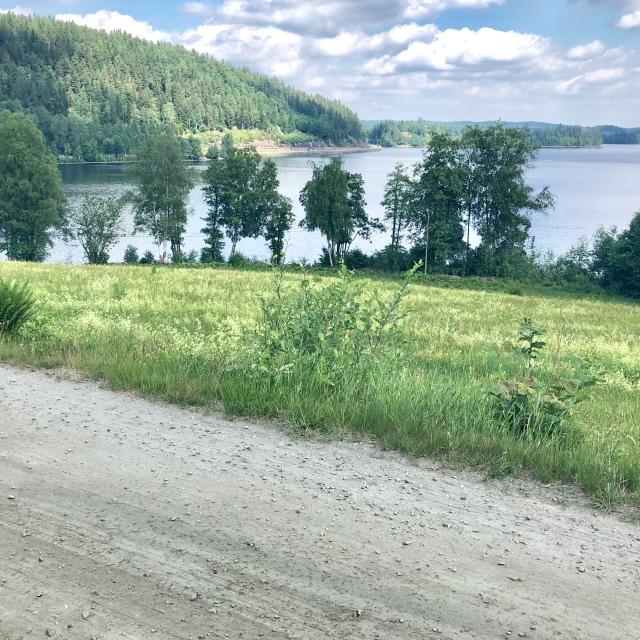 Någon kilometer ovanför Hultafors på södra sidan Viaredssjön