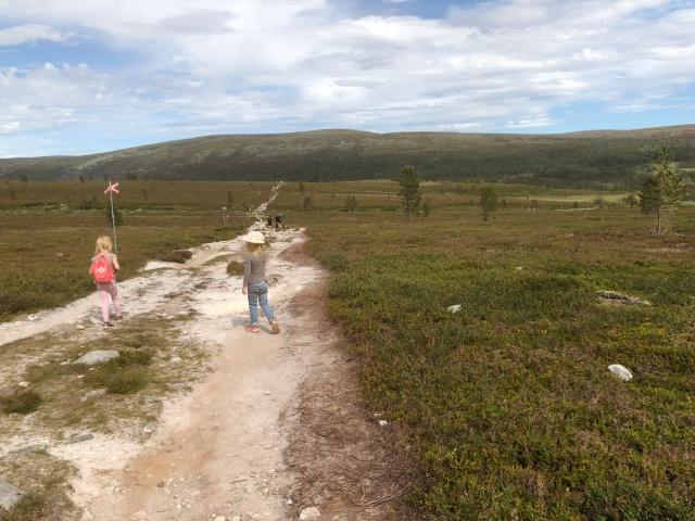 På väg tillbaka till Sjöstugan från Silverfallet