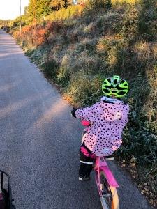 Vi bor bara en halv kilometer från Sjömarkenskolan, men den byggs om nu så istället får Astrid gå i förskoleklass i Sandred, knappt 3,5 km bort. Det är var kallt att cykla igår. Första minusgraderna är ofta en chock.