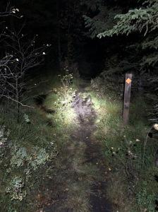 Träningen går uselt. Men jag sprang i alla fall hem från Hestrastugan igår genom skogen. Drygt 6,5 km, fin stig nästan hela vägen. Tack till Peder Hallberg för lån av pannlampa.