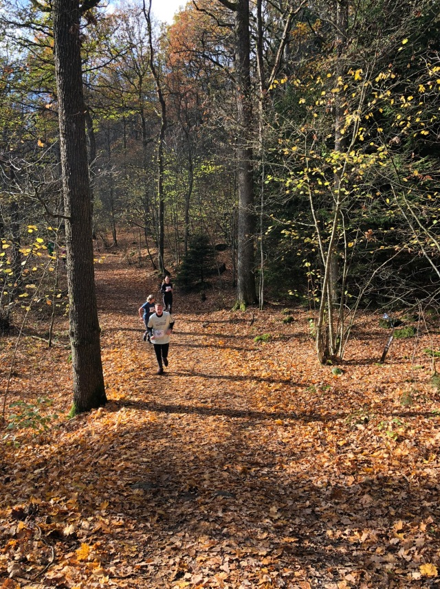 Löpning på Rya Åsar