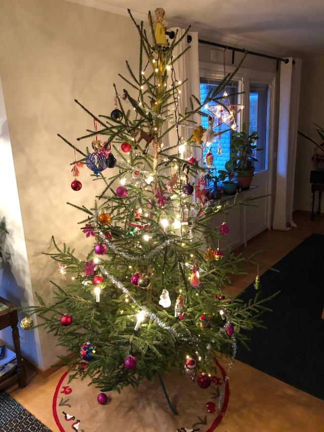 En av våra tre julgranar från svärfars skog