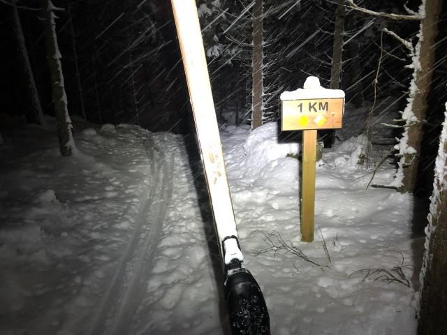 Turskidåkning på hemmaplan. Här på Sjömarkens 5 km-spår.