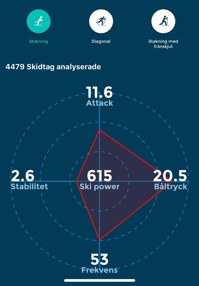 Racefox Holmenkollmarsjen stakning. Attack, båltryck, stabilitet, frekvens och ski power.