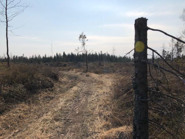 Nordtorps 5 km-spår för löpning/vandring