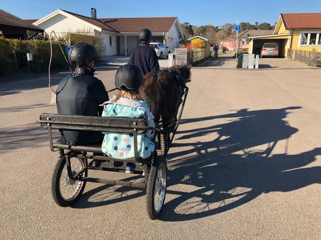 Häst och vagn i Vejbystrand