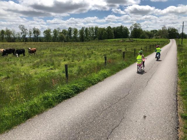 Fina vägar för cykling och rullskidåkning i Nordtorp