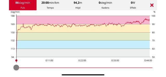 Med 2,5 km kvar ökade jag. Jag kunde nog pressat mig lite hårdare tidigare, men visste inte riktigt. Årets första löptävling.