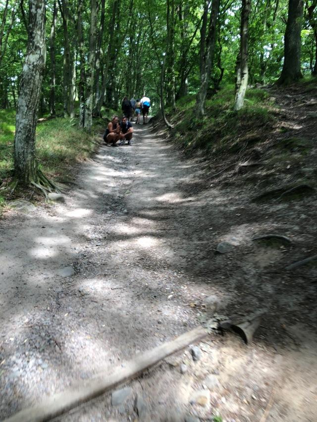 Skåneleden i Stenshuvud nationalpark