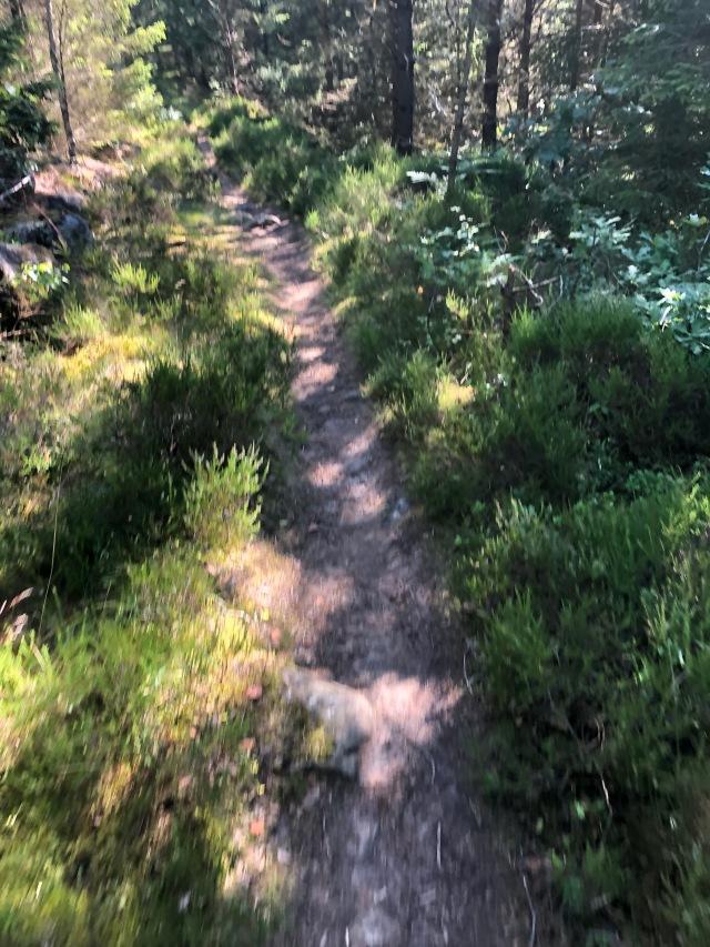 Stig i Bredared. Trail som det ibland heter.