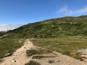 Fjällvandring i Åre