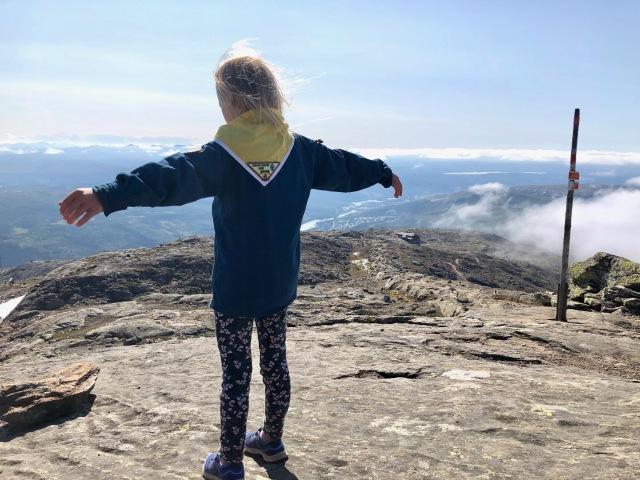 Toppen av Åreskutan