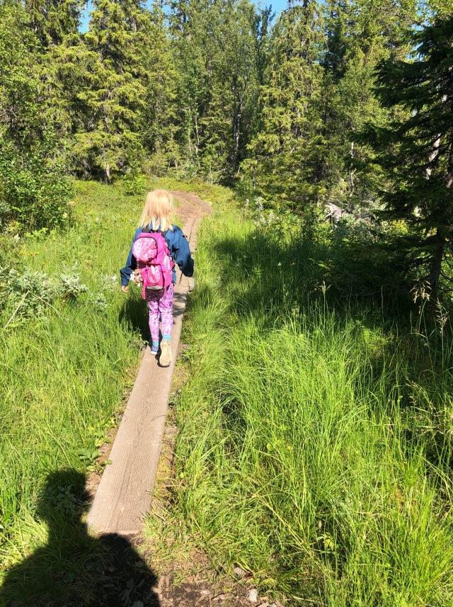 Välliste runt i Trillevallen. Fjällvandring med barn.