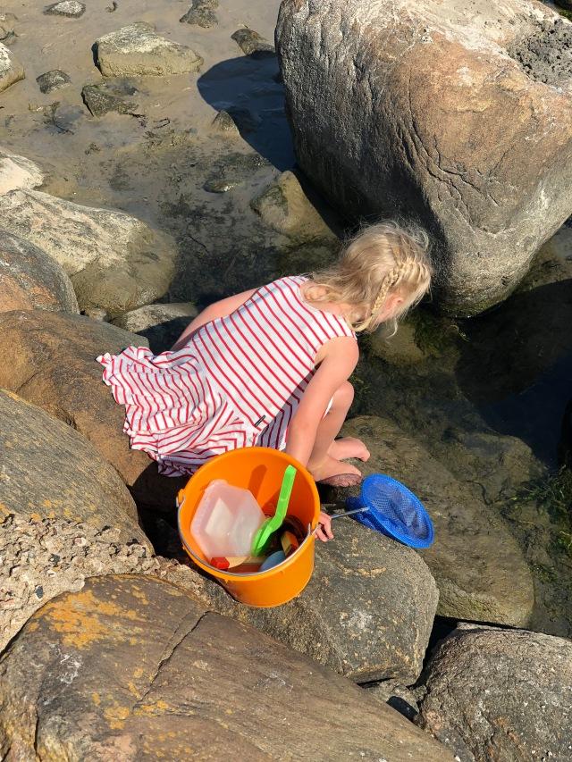 Maj stora intresse i somras var att fiska krabbor. 3 timmar ansåg hon flera gånger var för kort tid.
