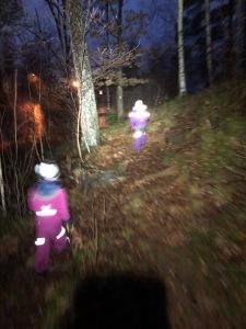Jag gjorde en reflexbana i ett närliggande skogsparti förra året. I helgen var vi ute och testade den igen. Nästan alla reflexer satt kvar. Kul grej att göra med barnen!