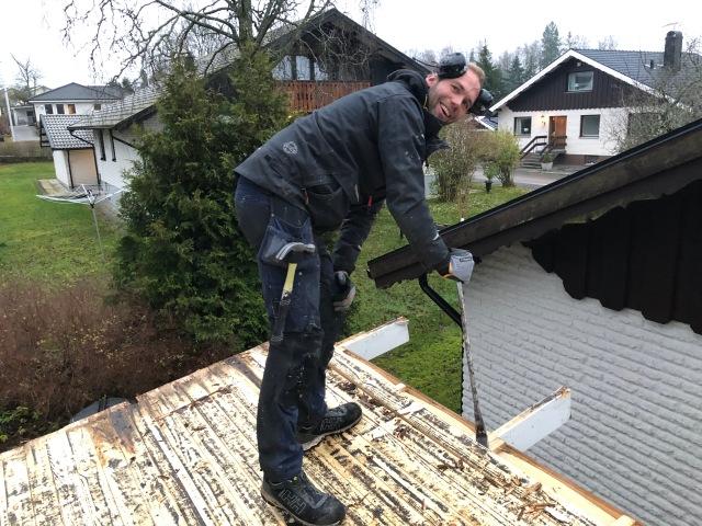 Magnus Sjöbjer bytte tak på vår friggebod. Jag hjälpte i a f till med att riva bort bräder samt langa upp nya.
