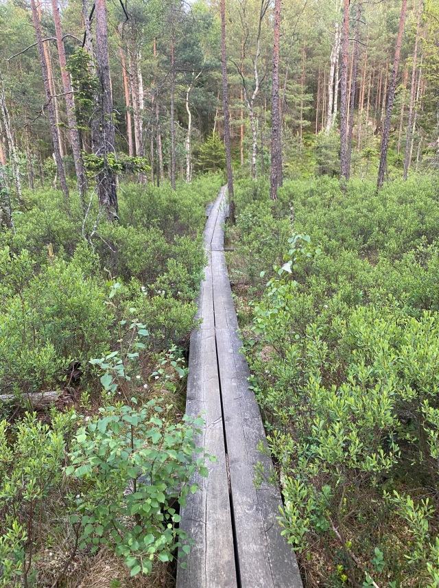 Storsjön runt i Rydboholm