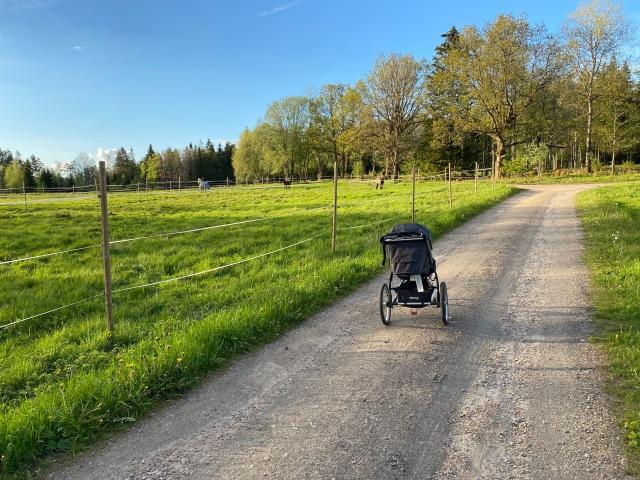 Kvällslöpning med joggingvagn på Skärkhultsvägen