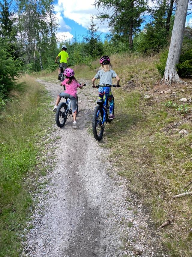 Maj var inte så cykelsugen så det var Astrid och jag från vår familj som hojade.