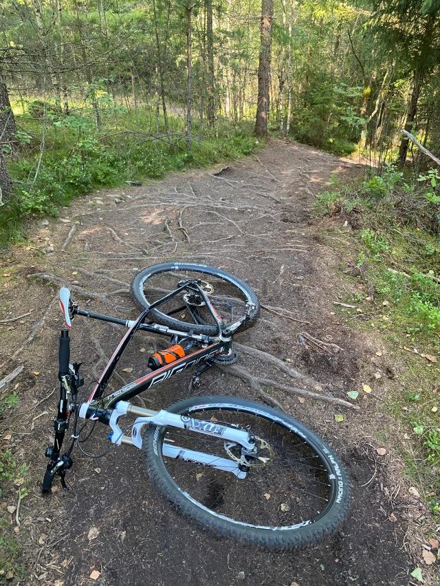 Jag cyklade en röd slinga (Hilly Bill) innan jag cyklade tillbaka till Gnosjö på småvägar från Isaberg. Lite för mycket rötter för mig. Snittade typ 10 km/h på det 3 km-spåret.