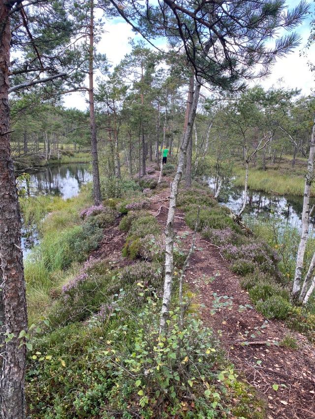 Nordtorps 5 km-spår