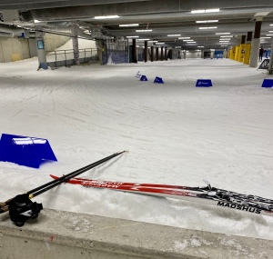 Skejttimmen i Skidome