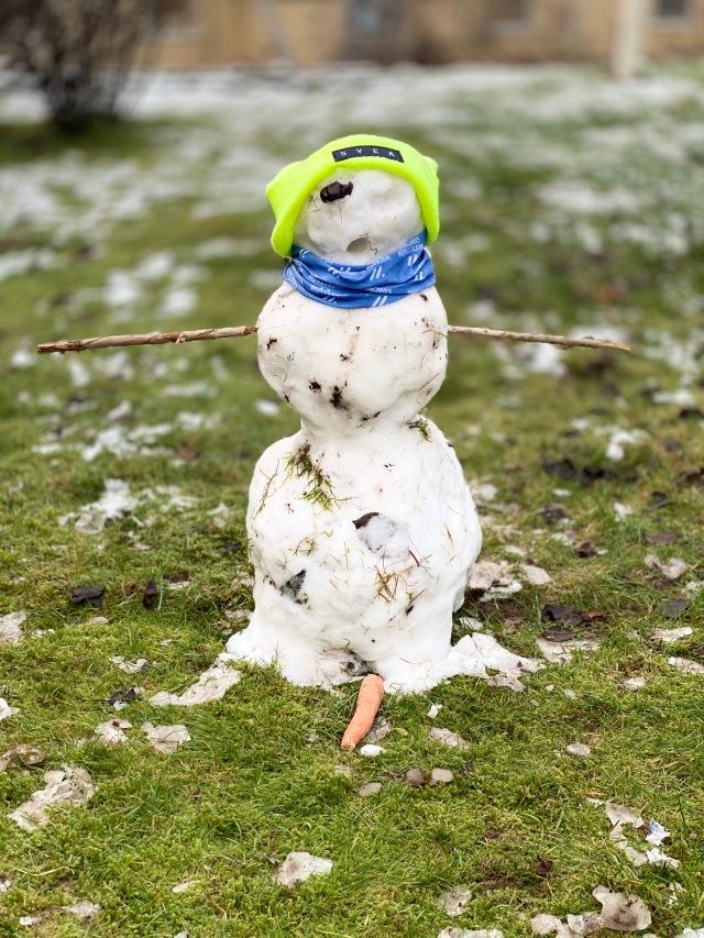 Barnen byggde en snögubbe på tomten igår. Ena ögat (en dadel) och näsan (morot) hade ramlat ner över natten.