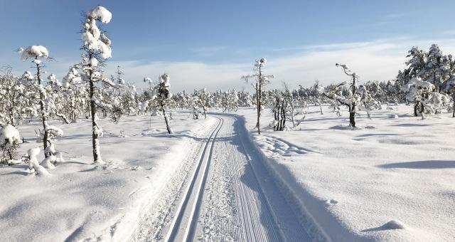 Hestrastugans 5 km-spår vårvintern 2018