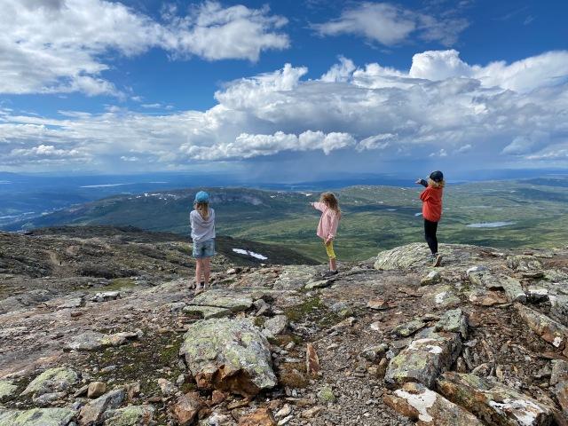Strax nedanför Åreskutans topp