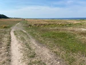 Löpning är precis som vid större delen av västkusten inte superlattjo. Både Jakob Böhm och jag är rörande överens om att det är överskattat att springa vid havet. Platt och vändbana. Vi föredrar skogen och kuperingen i Borås.
