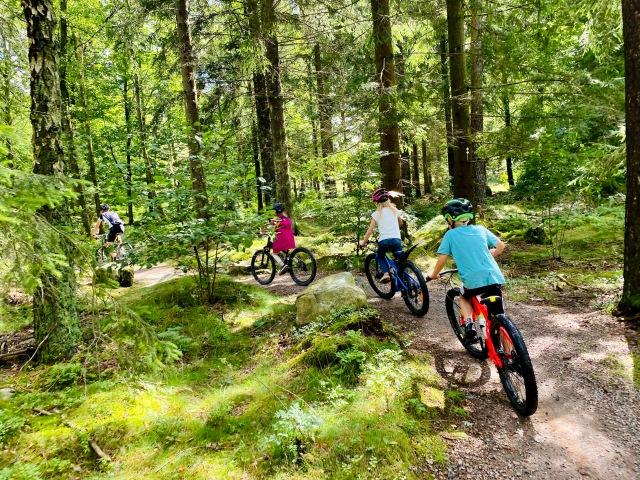 Cykling på Kungsbygget på Hallandsåsen